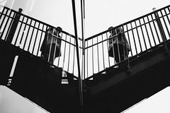 V (Zesk MF) Tags: bw black white mono zesk cologne x100f fuji strase street candid reflection spiegelung stair treppe steps