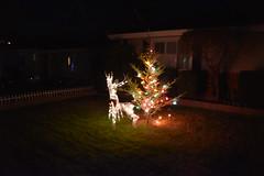 DSC_4871 (earthdog) Tags: 2018 needstags needstitle nikon nikond5600 d5600 18300mmf3563 christmas decoration light christmaslight sanjose willowglen
