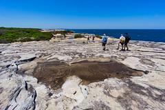 Royal NP - past the puddle (NettyA) Tags: 2018 australia nsw newsouthwales royalnationalpark sydney bushwalk bushwalker bushwalking coast coastal sandstone rock bushwalkers
