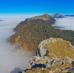 De la Pinéa au Grand Som - Chartreuse (Lumières Alpines) Tags: didier bonfils goodson73 dgoodson mer de nuage pinéa automne grand som charmant rando