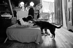 THE GIRL AND THE DOGS (LitterART) Tags: femme mädchen bauernhaus land country cottage hund hunde dogs monochrome mood interieur
