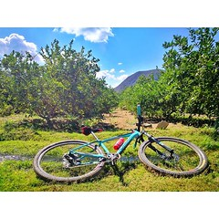 AYER 🔙 #GiroDePiro Un día para disfrutar a pleno de la naturaleza al desnudo, como me gusta ♥️♥️ . . . . . #LaBicicleteriaDO #OrbeaRD #MyOrbea #OrbeaOrca #Love #Bicycle #MountainBike #MTBBrasil #Shimano #PrefiroPedalar (STIoficial) Tags: stioficial instagram turismo republicadominicana dominicana tourism travel trip dominicanrep dominican andoenrd