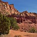 Evergreens and Red Dirt (Capitol Reef National Park)