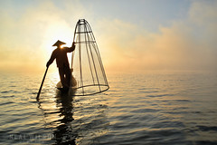Inle lake, Burma (Neal J.Wilson) Tags: travel myanmar burma asia fisherman fishing silhouette inle lake water sunrise sunset travelling working thirdworld traditiion fish net fishingnets nikon d5600 tranquil atmosphere