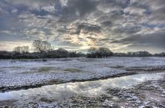 Winters reflection (ArtGordon1) Tags: hollowpond hollowponds leytonflats london england uk winter january 2019 davegordon davidgordon daveartgordon davidagordon daveagordon artgordon1
