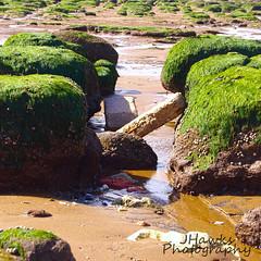 Hunstanton Beach, Norfolk UK (jackhawkins4421) Tags: beach sun summer sea rocks scenic sand