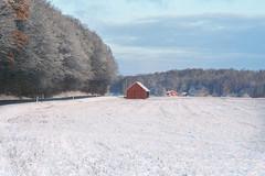 Countryside - Konica Pro 160 (magnus.joensson) Tags: sweden swedish skåne klippan snow winter december contax aria zeiss sonnar 100mm konica pro 160 exp