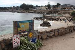 IMG_10930 (mudsharkalex) Tags: california pacificgrove pacificgroveca loverspointpark loverspointbeach beach