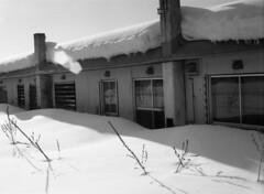 Abaodoned houses (threepinner) Tags: ikushunbetsu hokkaidou hokkaido mikasa northernjapan winter house press mamiya universal sekor tmax100 selfdeveloped spd 幾春別 三笠 北海道 北日本 50mm f63