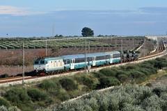 E652 067 TIGRE- MILITARY TRAIN (luciano.deruvo) Tags: