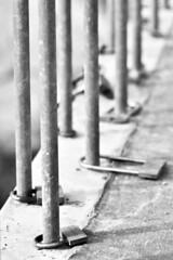 Soy felíz en tu prisión. Tu amor es mi cárcel. Yo no quiero libertad. (elena m.d.) Tags: street nikon d5600 sigma sigma105 flickr new 7dwf macromondays monocromo bw bn lineas elena guadalajara