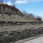 Slade Formation over Cowbell Member (Mississippian; Route 519 Outcrop, south of Morehead, Kentucky, USA) 3 thumbnail