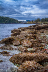 Seaweed rocks Nanaimo (kellypettit) Tags: nanaimo vancouverisland rockybeach westcoast landscape ocean sea smalltown