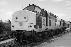 37699 (Monochrome Rail) Tags: 37699 37253 d6953 br british railways type3 diesel locomotive engine traction train railway growler tractor class37 englishelectric raailfreight trainload coal sector livery plant brel brml monochrome black white ukrail monochromerail edengrove