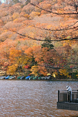 Lake Chūzenji (中禅寺湖) | Tochigi, Japan (Ping Timeout) Tags: lake 中禅寺湖 chūzenji kegon falls waterfall mount nantai volcano scenic scene water outdoor season fall autumn japan nippon holiday travel 東京 日本 october 2018 vacation explore scenery colour color orange red yellow leaves tree hill mountain waterscape people person distance boat paddle reflection reflect platform balcony lookoout ripple wind breeze afternoon flora branch wood male man autoremovedfrom1to5faves