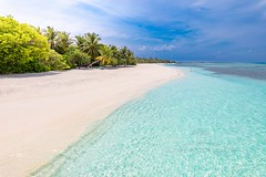 Idyll (icemanphotos) Tags: beach landscape waves tropical exotic sand palm
