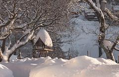 Scène de neige (mrieffly) Tags: canoneos50d hautesvosges htrhin alsace hiver