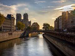 Notre Dame (nicolas.vogt) Tags: paris voiglander 35mm 17 ultron sony a7ii alpha ilce7m2
