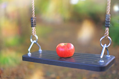 Apple Swing.. (KissThePixel) Tags: swing apple red fruit food woodland garden bokeh macro focus dof depthoffield dofalicious beautiful bokehlicious november autumn light home nikon nikond750 sigmaart sigmaf14 50mm