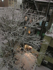 IMG_5076 (Brechtbug) Tags: 2018 november evening blizzard snow storm hells kitchen clinton near times square broadway nyc 11152018 new york city midtown manhattan snowing storms snowstorm winter weather building fog like foggy hell s nemo southern view ny1snow