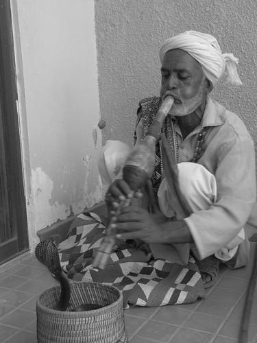 Snake charmer, Sindh, Pakistan.