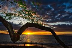 Sunset through the trees (Kirt Edblom) Tags: maui mauihawaii kihei kiheihawaii hawaii kamaoleiiipark park countypark wife gaylene water scenic milf sunset sunlight serene sun bright clouds yellow blue beach tree trees tropical people sand sunburst leaves pacific pacificocean ocean kirt kirtedblom edblom nonhdr luminar nikon nikond7100 nikkor18140mmf3556 dusk landscape waterscape seascape