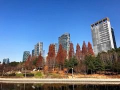 Songdo Central Park (JuhaOnTheRoad) Tags: songdo incheon korea city earthasia