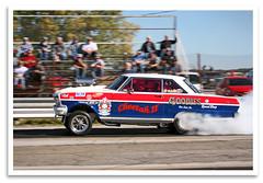 Cheetah II (bogray) Tags: racecar dragracer nostalgiadragracing mokandragway smokinmokan asbury mo since1962 americanhotrodreunion 1963chevyii burnout cheetahii