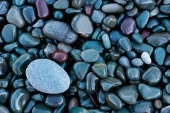 Sea Stones (Karen_Chappell) Tags: rock stone pebble macro nature blue rocks stones pebbles beach middlecove middlecovebeach canonef100mmf28usmmacro canada atlanticcanada avalonpeninsula eastcoast newfoundland nfld grey multicoloured colourful colours colour color green