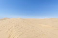 _RJS3972 (rjsnyc2) Tags: 2019 africa d850 desert dunes landscape namibia night nikon outdoors photography remoteyear richardsilver richardsilverphoto safari sand sanddune travel travelphotographer animal camping nature wildlife