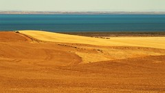 The Farm and the Gulf via Port Clinton, South Australia (Red Nomad OZ) Tags: australia southaustralia portclinton yorkepeninsula farm agriculture field rural country countryside