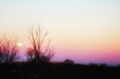 Cold Sunset (LAKAN346) Tags: sunset light outdoors colors