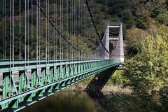 Gorges de la Truyère (Prof. Tournesol) Tags: france occitanie aveyron bridge pont