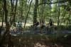 Forêt de Fontainebleau 1 ®Amelie Laurin