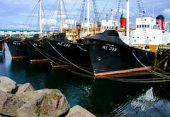 whaler (Guy Goetzinger) Tags: schiff technik goetzinger iceland island 2006 boat whaler ship reykjavik harbour port casio