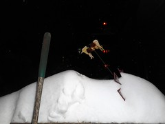 The Cow Jumped over the Moon (navejo) Tags: montreal quebec canada snow cow night alley fence neighbours moon