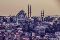 ISTANBUL (01dgn) Tags: süleymaniye istanbul turkey türkiye türkei travel streetphotography bosphorus moschee mosque camii