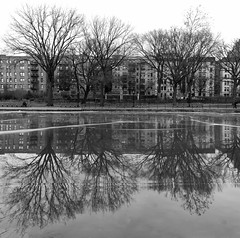 Row Houses (Joe Josephs: 3,166,284 views - thank you) Tags: harlemmeer centralpark nyc newyorkcity urbanpark irbanscene cityscape cityhousing citystreet urbanexploration urbanscene harlemnewyork bw blackandwhite blackandwhitephotography monochrome photojournalism streetphotography
