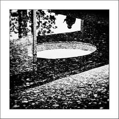 Au pays des Ombres / In the Land of Shadows #1 (Napafloma-Photographe) Tags: 2016 architecturebatimentsmonuments bandw bw bâtiments châteaulacoste cuisinealimentationnourriture fr france géographie métiersetpersonnages natureetpaysages objetselémentsettextures personnes techniquephoto végétaux arbre blackandwhite eau galets monochrome napaflomaphotographe noiretblanc noiretblancfrance ombre photographe reflet silhouette vitre lepuysainteréparade bouchesdurhône provence vin