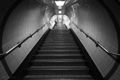 Tunnel vision at Highbury and Islington (Luke Agbaimoni (last rounds)) Tags: londonunderground london londontube train transportforlondon blackandwhite streetphotography
