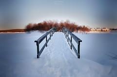 Snow Path (Luca Enrico Photography) Tags: arjeplog sweden cold snow winter inverno neve freddo landscape svezia lappland nikon d750