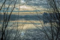 same lake, other morning, other light (ro_ha_becker) Tags: fujix100 landschaft landscape lake see