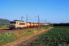 Plaquée matinale sur la rive droite (elise_vdbrc) Tags: locomotive chemindefer railway fret marchandises france l'ardoise gard rhône rivedroite bordeaux sibelin bb7200 sncf train