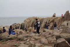IMG_10950 (mudsharkalex) Tags: california pacificgrove pacificgroveca loverspointpark