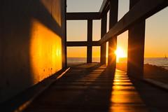 Venice Beach (bold.) Tags: losangeles la socal cali baywatch sunset beach venice venicebeach usm f14 50mm ef canonef50mmf14usm canoneos6d 6d eos canon california unitedstates us