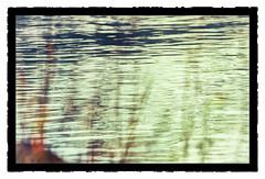 Am Wasser zu singen (wolfiwolf) Tags: wolfiwolf wolfi wolf wolfiart wolfskunst wolfiwolfy eneamaemü elysium existenz ersterbutler etwasganzbesonderes zweiterbutler nass wasser fluss reflections green groskunst schilf farkas fuddlitz farky art bildlen blau bleu blue bluenote bildhigh creation composition daswirklichwichtige derexplorierendste er fuddler genie glanz huldigung ich jazzinbaggies jazz jo ja jederduftdesuniversumsistinmeinemfellzufinden kleinewolfis lichtkomposition lichtkreiserln liebe marieschen meinneuesbildlen nachdemvollmond offenbaren puttlerseht quantensuppe quantensymphonie quantencomputer quantentheorie resonanz stüben stube schöpfung tanzendesresonanzuniversum universe universum vollmond weihnachten geschenk lassetunssingen