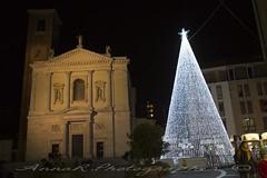 Piazza della Libertà (Anna R. Ph) Tags: natale albero 2018 tree merrychristmas light luci white bianco square libertysquare