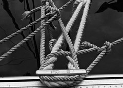 Ropes and Knots (alicejack2002) Tags: ropes knots bw leica