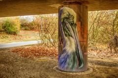 Pelican (JuliSonne) Tags: streetart urbanekunst mauer wall graffiti colors scene urban pasteup stencil street karlsruhe wuam pelikan