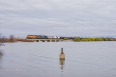 Union Pacific Pilot Point, TX (jtrainb) Tags: choctawsub railroads unionpacific lake oil